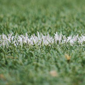 Qui sont les meilleurs tireurs de coup francs sur Football Manager 2019 ?